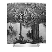 Black And White Water Reflections Shower Curtain