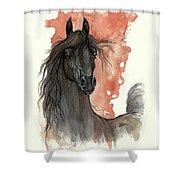 Black Arabian Horse 2013 11 13 Shower Curtain