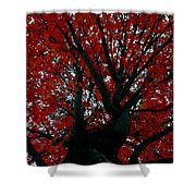Black Bark Red Tree Shower Curtain