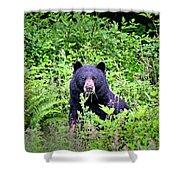 Black Bear Eating His Veggies Shower Curtain