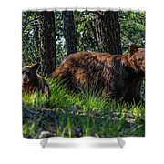 Black Bear - Mother And Baby Shower Curtain