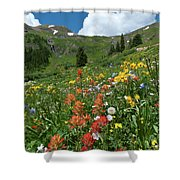 Black Bear Pass Landscape Shower Curtain by Cascade Colors