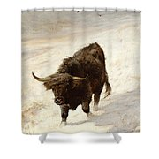 Black Beast Wanderer  Shower Curtain