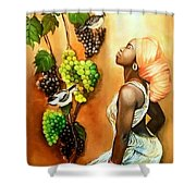 Black Beauty003 Shower Curtain