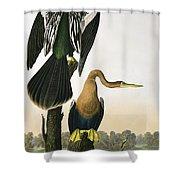 Black Billed Darter Shower Curtain by John James Audubon