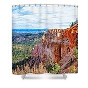 Black Birch Canyon Shower Curtain