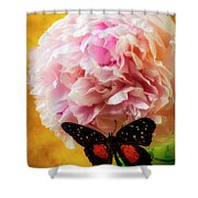 Black Butterfly On Peony Shower Curtain