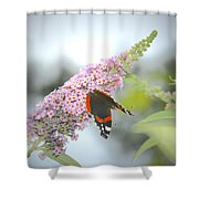 Black Butterfly Shower Curtain