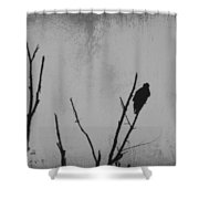 Black Buzzard Moon Shower Curtain