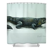 Black Caiman Shower Curtain