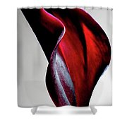 Black Calla Lily Shower Curtain