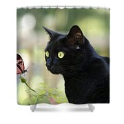 Black Cat And Butterfly Shower Curtain