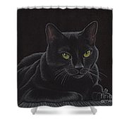 Black Cat - I'm Watching You Shower Curtain