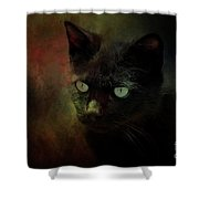 Black Cat Portrait Shower Curtain