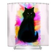 Black Cat Rainbow Sky Shower Curtain