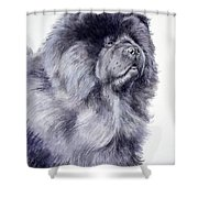 Black Chow Chow  Shower Curtain