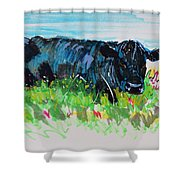 Black Cow Lying Down Painting Shower Curtain