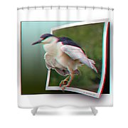 Black Crowned Night Heron - Use Red-cyan 3d Glasses Shower Curtain