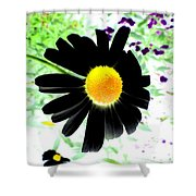 Black Daisy Shower Curtain