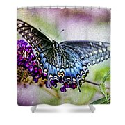 Black Eastern Swallowtail Shower Curtain