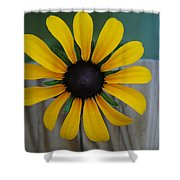 Black Eye Shower Curtain