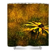 Black-eyed Susan And Granite Shower Curtain