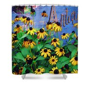 Black-eyed Susans At The Bag Factory Shower Curtain