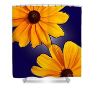 Black-eyed Susans On Blue Shower Curtain
