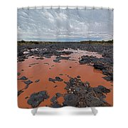 Black Falls Crossing Shower Curtain