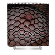 Black Fishnet Shower Curtain