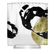 Black Gold 1 Shower Curtain