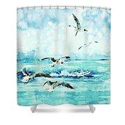 Black-headed Seagulls At Seven Seas Beach  Shower Curtain