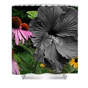Black Hibiscus Shower Curtain