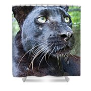 Black Is Beautiful Shower Curtain