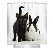 Black Kitten And Dutch Rabbit Shower Curtain