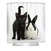 Black Kitten And Dutch Rabbit Shower Curtain by Mark Taylor