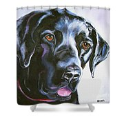 Black Lab No Ordinary Love Shower Curtain