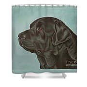 Black Labrador Dog Profile Painting Shower Curtain