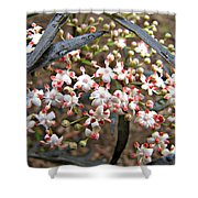 Black Lace Elderberry With Raindrops Shower Curtain