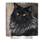 Black Maine Coon Shower Curtain