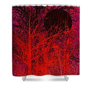 Black Moon Shower Curtain