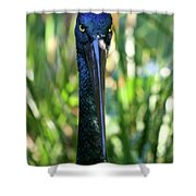 Black Necked Stork Shower Curtain