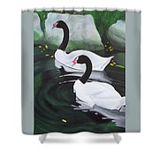 Black Necked Swans Shower Curtain