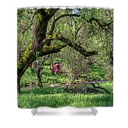 Black Oak And Creek Shower Curtain