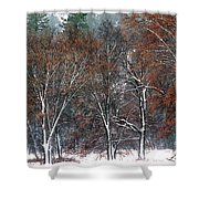 Black Oaks In Snowstorm Yosemite National Park Shower Curtain