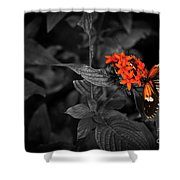 Black-orange Butterfly Shower Curtain