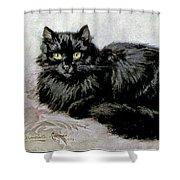 Black Persian Cat Shower Curtain