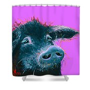 Black Pig Painting On Purple Shower Curtain