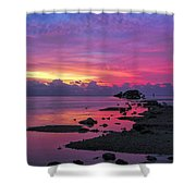 Black Point Shower Curtain