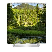 Black Pond - Owl's Head, New Hampshire Shower Curtain by Erin Paul Donovan
